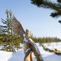 Женщина-птица :: Николай Бирюков