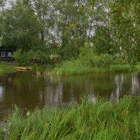 Жизнь у реки :: vladimir