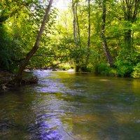 река Черная :: Андрей Козлов