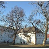 В рязанском кремле :: Александра
