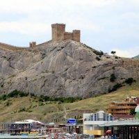 Вид на крепость :: Ирина Фирсова