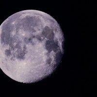 Луна :: Геннадий Хоркин