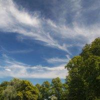 Небо над Кэмбриджем :: Дмитрий Сорокин
