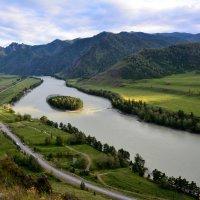Катунь, Горный Алтай :: Геннадий Ячменев