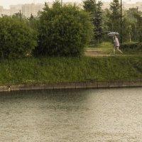 Непогода,ливень :: Aнна Зарубина