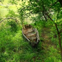 Лодка. :: оксана