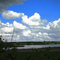 Облака над головой :: Наталья
