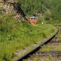 Путешествие по Байкалу :: Марина Брюховецкая