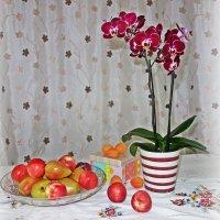 Фрукты с орхидеей... :: Galina Dzubina