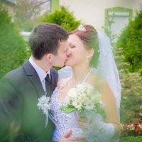 Любов навколо нас... :: Тарас Семигаленко
