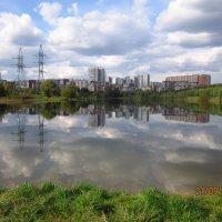 Озеро в московском парке :: Анастасия сосновская