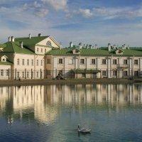 У Белого  пруда. :: lady-viola2014 -