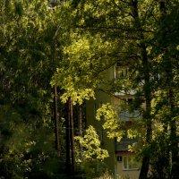 Любимые уголки моего города... :: Ольга