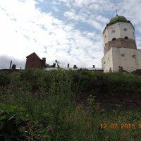 вид на замок с реки :: Евгения Чередниченко