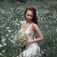 На ромашковом поле... :: Дмитрий Бегма