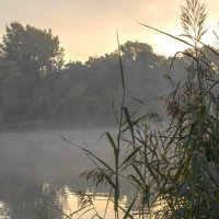 Утро на реке :: Николай Климович