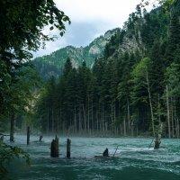 Горная река :: Daniel Woloschin