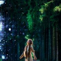 Фото проект Лесная ведьма :: Рома Фабров