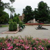 Между Ратушей и Центральной площадью есть очень красивый сквер :: Елена Смолова