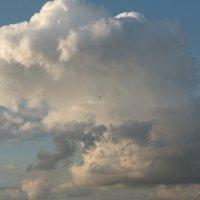 Полет к облакам :: Владимир Д