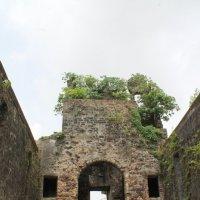 Руины каталитического храма Васаи форт Мумбаи :: maikl falkon