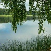 У озера :: Олег Козлов