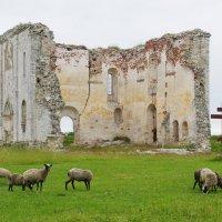 Краснохолмский Николаевский Антониев монастырь. :: Ирина Нафаня