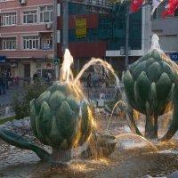 фонтаны Истамбула :: liudmila drake