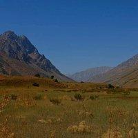 Долина Ойгаинга на высоте 2450м. :: Виктор Осипчук