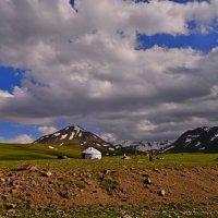 Киргизия :: Андрей Гомонов