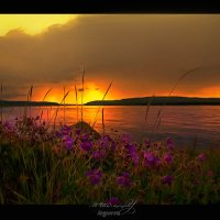 Вечерняя Ангара :: Anastasiya Ageeva
