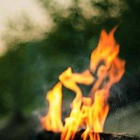 Пламя костра :: Виталий Павлов