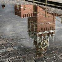 После дождя :: ferrero s