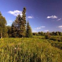 Северный пейзаж :: Александр