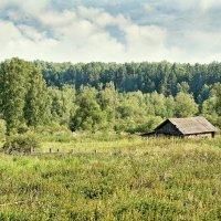 Домик в деревне :: Дмитрий Конев