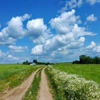 Дорога в Дятькино :: Валерий Талашов