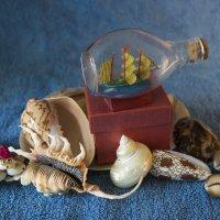 Морские сувениры :: Aнна Зарубина