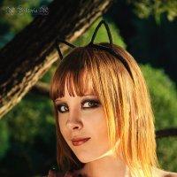 Девушка Кошка :: Виктория Андреева