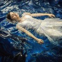 Aqua :: Дмитрий Лаудин