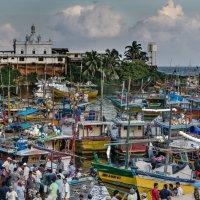 Фрагмент рыбного рынка. :: Edward J.Berelet
