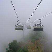 Дорога в тумане. Красная поляна. Высота 2200 м. :: Vladimir 070549