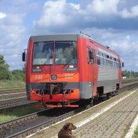 Встречаем поезд... :: Владимир Павлов