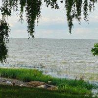Берег,залив. :: Владимир Гилясев