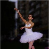 Белый Лебедь---06 :: Владимир Холодный