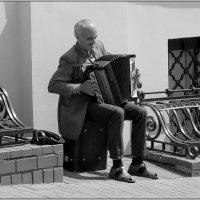Уличный баянист. :: Роланд Дубровский