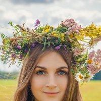 лето взяло в руки краски... :: Людмила Зяблова