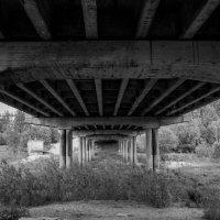 Под мостом :: Евгений Кривоносов