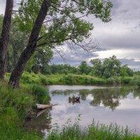 Лесное озеро :: Любовь Потеряхина