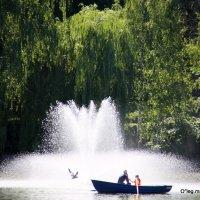 мы на лодочке катались или лето ах лето :: Олег Лукьянов