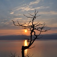 Однажды вечером на Байкале... :: Татьяна Алферова